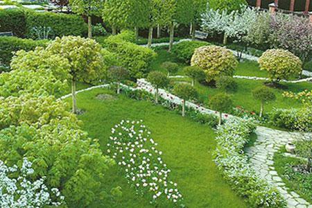 Благоустройство и озеленение в Казани