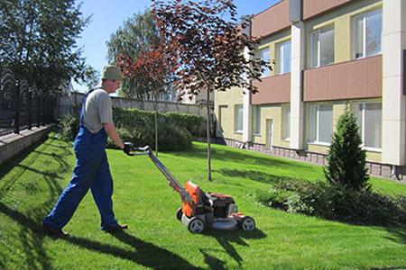 Услуги профессионального садовника